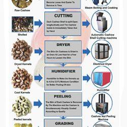 Cashew Nut Processing Plants